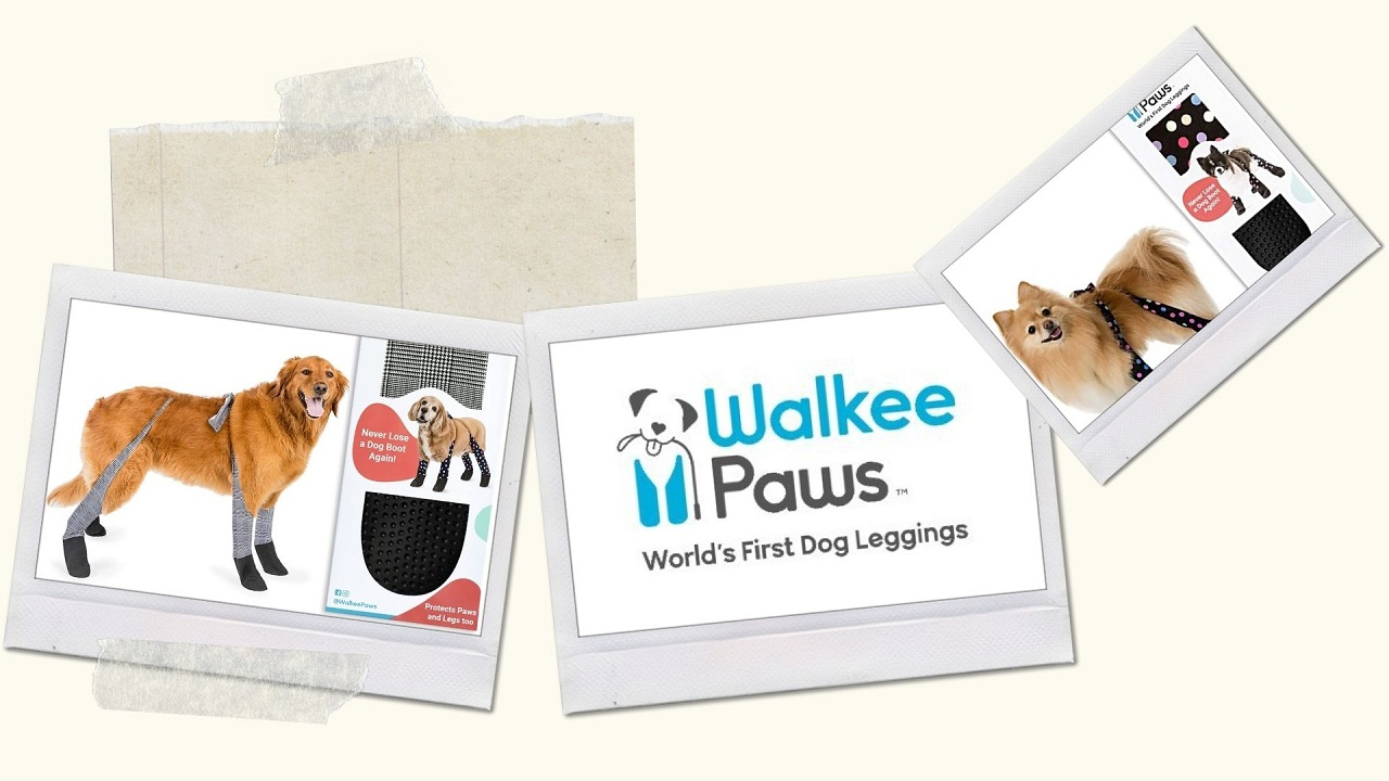 Walkee Paws Review