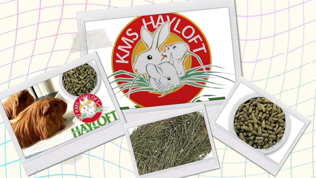 KMS Hayloft Review